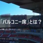 【バルコニー席とは?】乃木坂46 7thバスラからの新席種を徹底解説します!京セラドーム